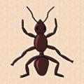 蚂蚁加速器