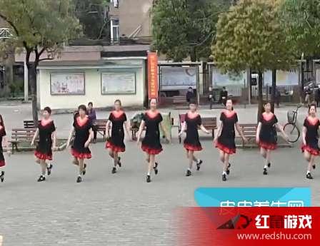 广场舞《天下朋友》高清在线教学 《天下朋友》广场舞动作分解教学视频