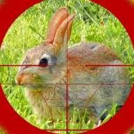 狙击手猎兔3D