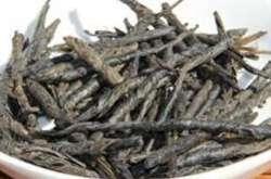 苦丁茶的功效与作用,减肥益寿!