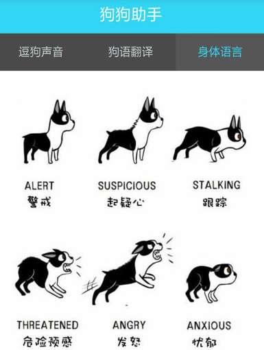 狗狗助手怎么用 狗狗助手使用方法是什么