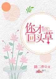 庞林蓝衿盈小说