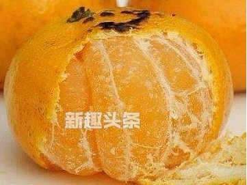 橘子能烤吗?烤橘子是什么